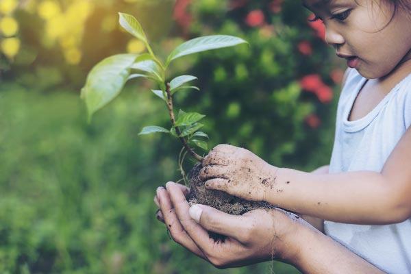 sustentabilidade criança feliz mexendo com planta